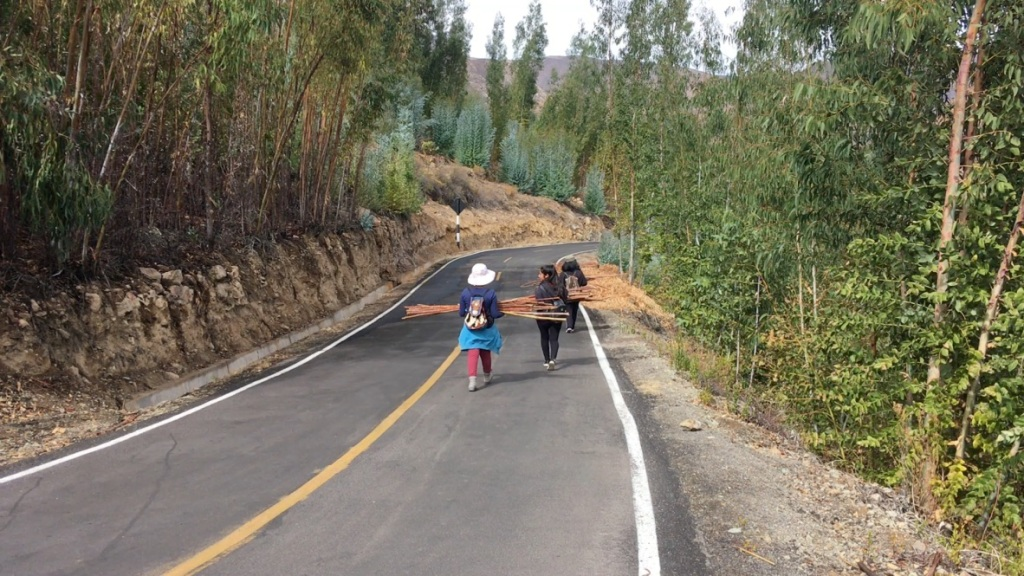 Three students walk down the road, carrying long pieces of wood for the fire.